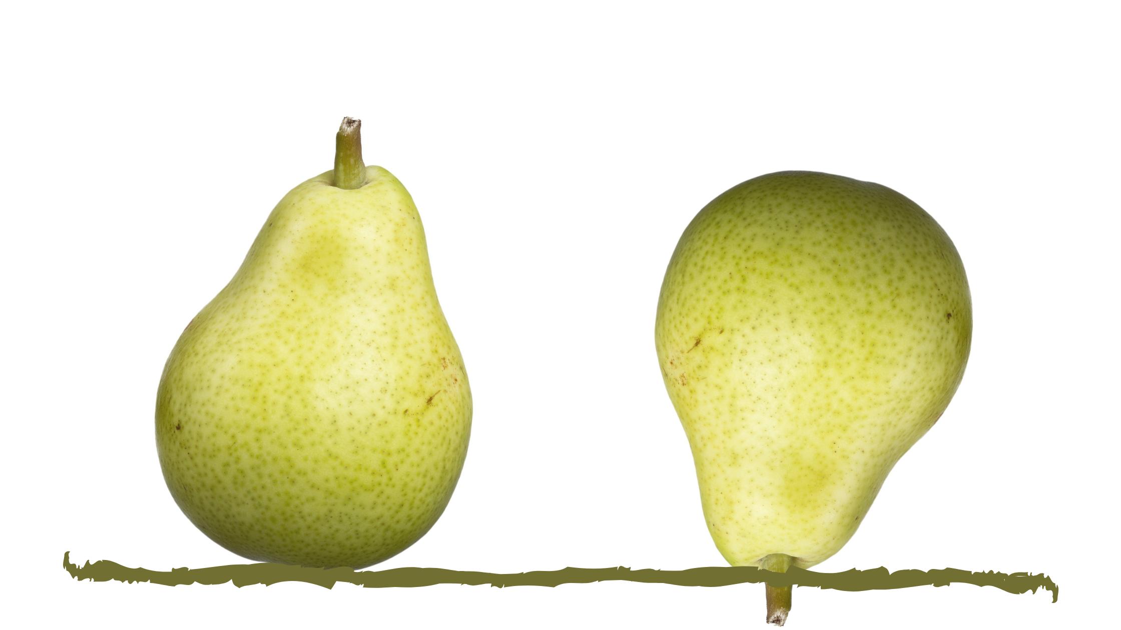 Laquelle de ses poires est la plus stable ?